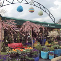 garden-heights-nursery-arboretum-and-garden-mo
