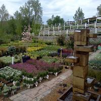 bayer's-garden-shop-gardens--arboretum-mo