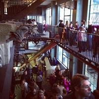 city-museum-aquariums-mo