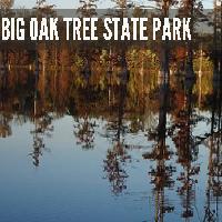 big-oak-tree-state-park-mo-hiking