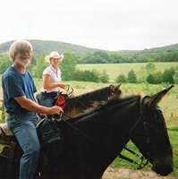meramec-farm-cabins-horsebackc-riding-in-mo