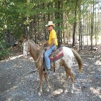 west-plains-training-horseback-riding-in-mo