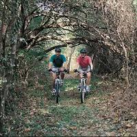 frisco-highline-trail-biking-missouri